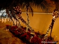 05DEC2014CocoplumHoliday_040
