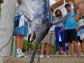 31MAY2014CPYCDolphinDock_043