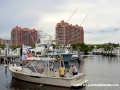 31MAY2014CPYCDolphinDock_132